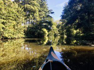 Unterwegs im Kanu in Wilhelsmaburg